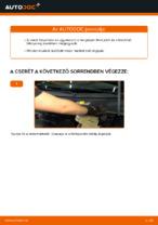 Online kézikönyv – saját kezű VW PASSAT Variant (3B6) Rendszámtábla világítás izzó csere