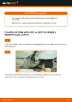 Wie Sie den Kraftstofffilter am VOLKSWAGEN PASSAT B5 3B6 ersetzen