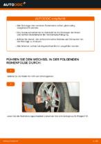 Austauschen von Stützlager Anweisung PDF für VW PASSAT