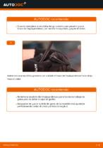 PDF manual sobre mantenimiento POLO
