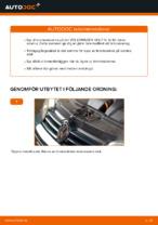 Bilmekanikers rekommendationer om att byta VW Golf 4 1.6 Gasfjäder Baklucka