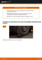Wie Gasdruck Federbein tauschen und einstellen: kostenloser PDF-Tutorial