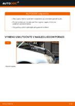 Online bezplatné pokyny ako obnoviť Tlmiče perovania VW POLO (9N_)