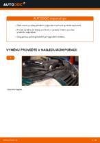 Jak vyměnit pružiny předního zavěšení kol na VOLKSWAGEN PASSAT B5 (3BG, 3B6)