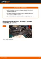 Montage Schraubenfeder VW PASSAT Variant (3B6) - Schritt für Schritt Anleitung