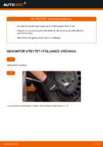 Bilmekanikers rekommendationer om att byta VW Polo 9n 1.2 12V Bromsskivor