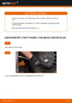 Lær hvordan du fikser Hjullager bak venstre høyre VW problemet