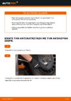 Εγχειρίδιο PDF στη συντήρηση POLO