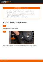Cum se înlocuiește rulmentul butucului roții din spate a autovehiculului Volkswagen Polo IV