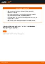 Tipps von Automechanikern zum Wechsel von VW Polo 9n 1.2 12V Radlager