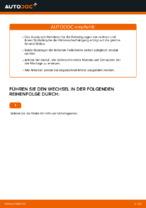Schritt-für-Schritt-PDF-Tutorial zum Bremsbacken-Austausch beim VW POLO (9N_)