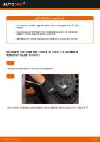 Wie Radlagersatz VW POLO auswechseln und einstellen: PDF-Anleitung