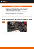 Kuinka vaihdat etujarrulevyt VOLKSWAGEN PASSAT B5 (3BG, 3B6) -autoon
