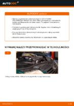 Samodzielna wymiana Tarcze hamulcowe tylne i przednie VW - online instrukcje pdf