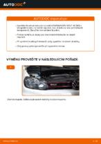 Jak vyměnit zadní brzdové kotouče na VOLKSWAGEN GOLF VI (5K1)