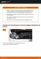 Auswechseln von Bremsscheibe Anleitung PDF für VW GOLF