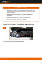 Skifte Bremseskiver VW GOLF: værkstedshåndbog