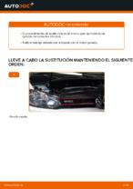 Recomendaciones de mecánicos de automóviles para reemplazar Discos de Freno en un VW Touran 1t3 2.0 TDI