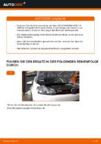 Austauschen von Bremsscheibe Anweisung PDF für VW GOLF
