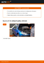 Schimbare Filtru ulei PEUGEOT 206: online ghidul