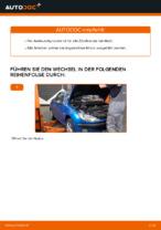 Austauschen von Zündkerzensatz Anweisung PDF für PEUGEOT 206