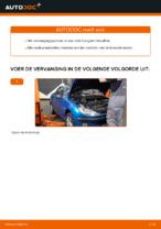 Aanbevelingen van de automonteur voor het vervangen van PEUGEOT Peugeot 206 cc 2d 2.0 S16 Oliefilter