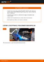 Skifte Bremseskiver bag og foran PEUGEOT 206: guider online