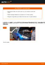 Cuándo cambiar Filtro de Aceite PEUGEOT 206 CC (2D): manual pdf