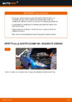 SNR KF159.60U per CITROËN, PEUGEOT | PDF istruzioni di sostituzione