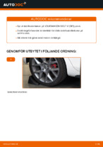 AUTOMEGA 110064110 för VW | PDF instruktioner för utbyte