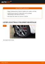 Værkstedshåndbog VW downloade
