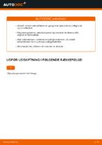 Vejledning MERCEDES-BENZ online