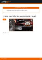 Dielňa príručka pre Renault Twingo 3
