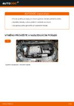 Jak vyměnit a regulovat Zarovka svetlometu : zdarma průvodce pdf