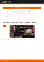 Recomendações do mecânico de automóveis sobre a substituição de RENAULT Twingo c06 1.2 16V Molas