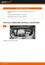 Kuidas asendada VOLKSWAGEN TOURAN I (1T3) esitulede pirni