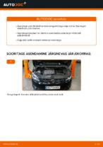 Automehaaniku soovitused, selleks et vahetada välja VW Touran 1t3 2.0 TDI Esitule pirn