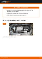 HELLA HID3SCP1 pentru TOURAN (1T3) | PDF manualul de înlocuire
