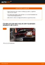 Tipps von Automechanikern zum Wechsel von RENAULT Twingo c06 1.2 16V Radlager