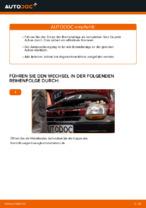 LPR 23699 für TWINGO I (C06_) | PDF Handbuch zum Wechsel