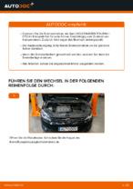 Wie Scheibenbremsen belüftet beim VW TOURAN (1T3) wechseln - Handbuch online