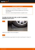 Hilfreiche Fahrzeug-Reparaturanweisung für hinten rechts Stabistrebe RENAULT