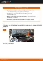 DIY-Leitfaden zum Wechsel von Federbeinlager beim VW GOLF VI (5K1)