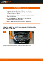 Cambiar Discos de Freno VW TOURAN: manual de taller