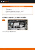 Elektrisk utrustning byta och reparationsmanual med illustrationer