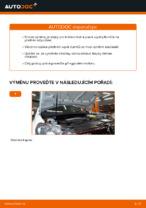 Jak vyměnit a regulovat Lozisko pruzne vzpery přední a zadní: zdarma průvodce pdf