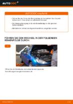 FERODO RACING FDS845 für 206 CC (2D) | PDF Handbuch zum Wechsel