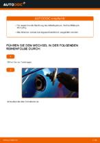 Wann Spritfilter wechseln: PDF Handbuch für PEUGEOT 206 CC (2D)