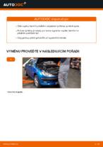 Jak vyměnit a regulovat Tlumic perovani PEUGEOT 206: průvodce pdf