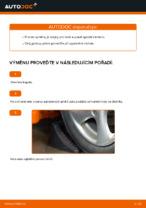 Doporučení od automechaniků k výměně PEUGEOT Peugeot 206 cc 2d 2.0 S16 Brzdovy kotouc